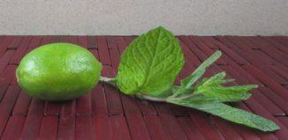 Hierbabuena y limón