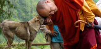 Consejos de un monje budista para limpiar tu hogar