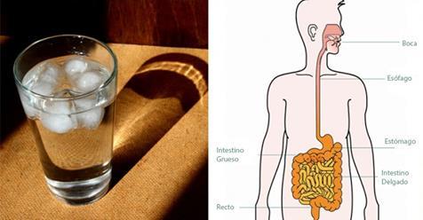 Hábitos para prevenir la hinchazón