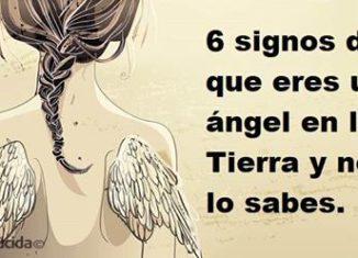 Signos de que eres un angel en la tierra