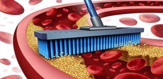Alimentos para limpiar el colesterol de las arterias