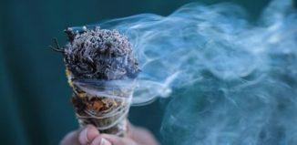 El humo de estas hierbas te limpia el organismo