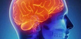 Los enemigos de tu cerebro de los que debes alejarte