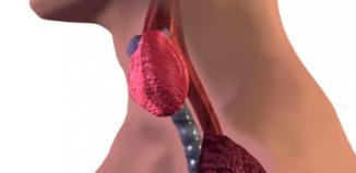 2 alimentos que atacan directamente a la tiroides