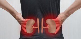 Como mantener unos riñones saludables