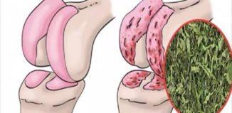 La hierbabuena para las rodillas recetada por médicos
